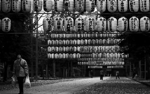 Dangling Lanterns In Okunitama Jinja