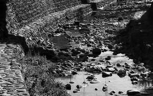 Riverside Of Nakajima River