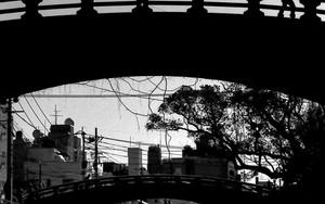 橋の上を歩くシルエット