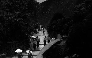 Umbrella Walking The Path In Shuri Castle