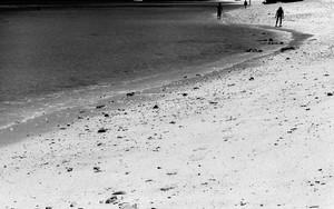 波打ち際に幾つかの人影