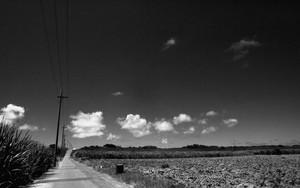 道と電線と雲