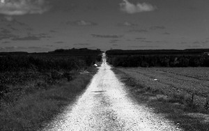 Graveled Road In The Field