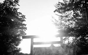 靖国神社の鳥居とふたつの影
