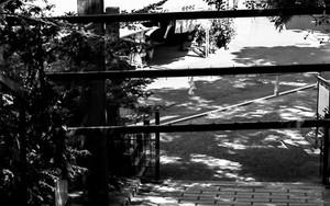 吉備津神社の参道にいた女