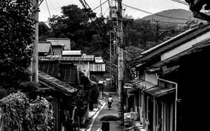 Narrow Street With The Umbrella