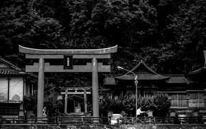 Bicycle Passing Torii By