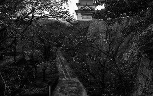 Bitchu Turret Of Tsuyama Castle