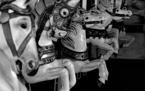 Horses Of The Carousel