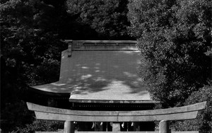 瀬戸神社の鳥居