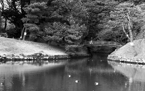 A Small Bridge In Hamarikyu
