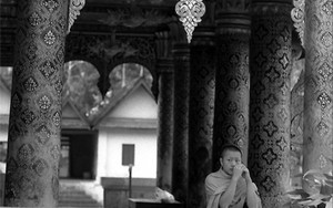 Monk In Wat Mai