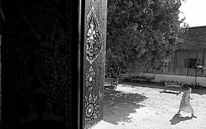 ワット・タートルアンの窓の外