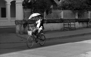 Umbrella, Woman And Bike