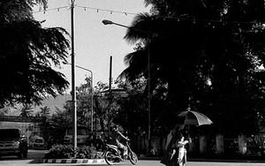 交差点を歩く日傘を差した僧侶