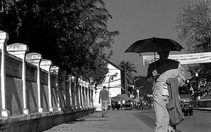 黒い日傘を差して道を往く僧侶