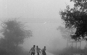 朝靄の中の三人
