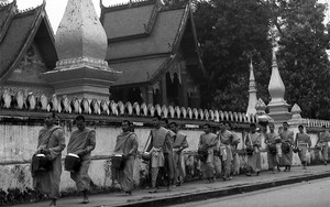 Line Of Monks For Morning Alms