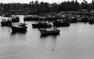 Fishing Boats After Working
