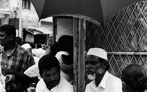 Bearded Man Under The Umbrella