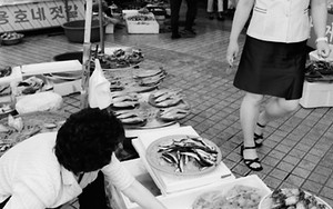 Women In The Fish Market