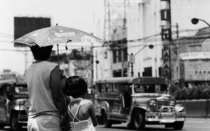 大通りの脇に立つ傘