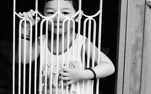 柵の向こうにシャイな少年