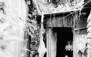 Figure In The Hut