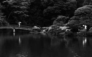 Bridge In Shinjuku Gyoen Park