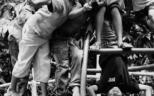 Children On A Jungle Gym