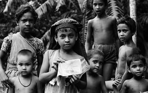 Glances Of The Children