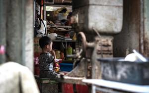 Little Boy In A Shop