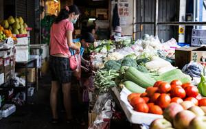 野菜と二人の女性