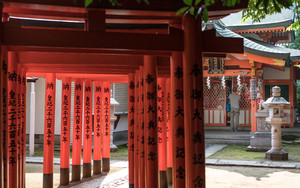 Prayer Hall And Torii