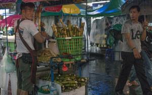 Man Holding Sugar Cane