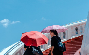 Umbrellas On Red Staircase