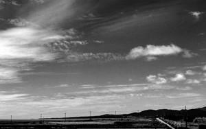 小浜島の空の下の道