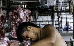 豚肉に囲まれて仕事をする若者