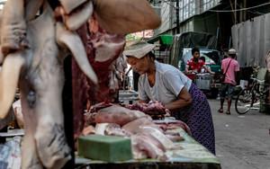 肉屋で売られていた豚の顔皮