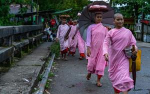 Nuns Wearing A Pink Kasaya