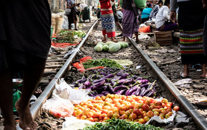 Vegetables On Railway Track