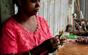 Woman Having A Betel Leaf