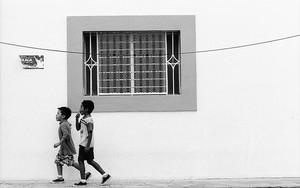 Window And Boys
