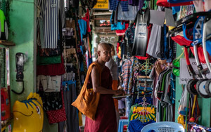 Buddhist Monk In Corridor