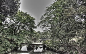 Stone Bridge In The Rikugien Garden