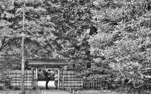 Figures At The Gate