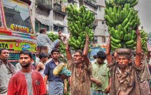 Men Carrying Bananas On The Head