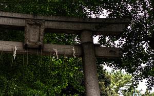 小山八幡神社の鳥居と拝殿