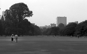 Couple Walking On The Lawn In Shinjuku Gyoen Park