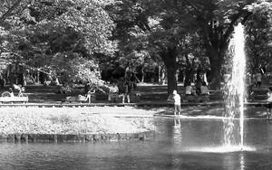 代々木公園の池で遊ぶ子ども
